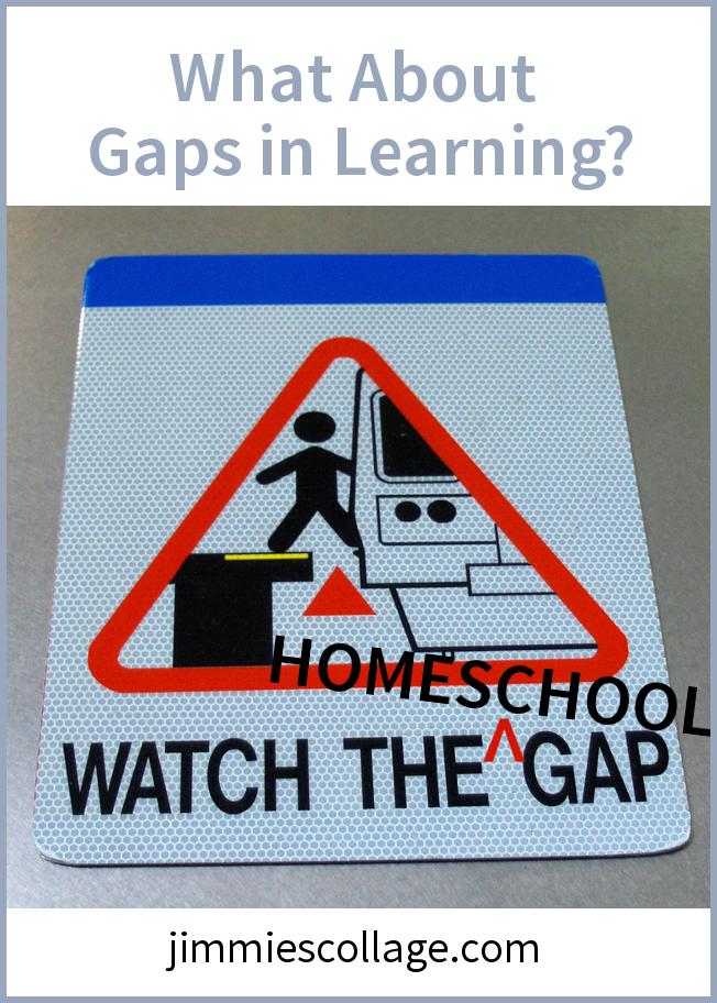 Homeschool Gaps in Learning