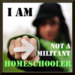 I am NOT a militant homeschooler.