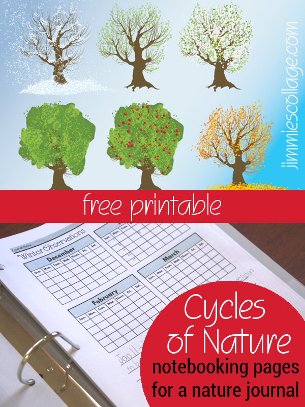 Cycles of Nature Notebooking Pages