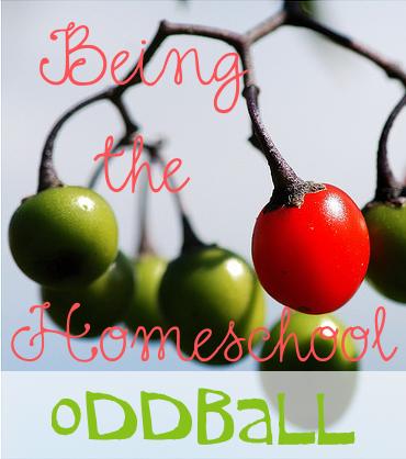 Being the Homeschool Oddball
