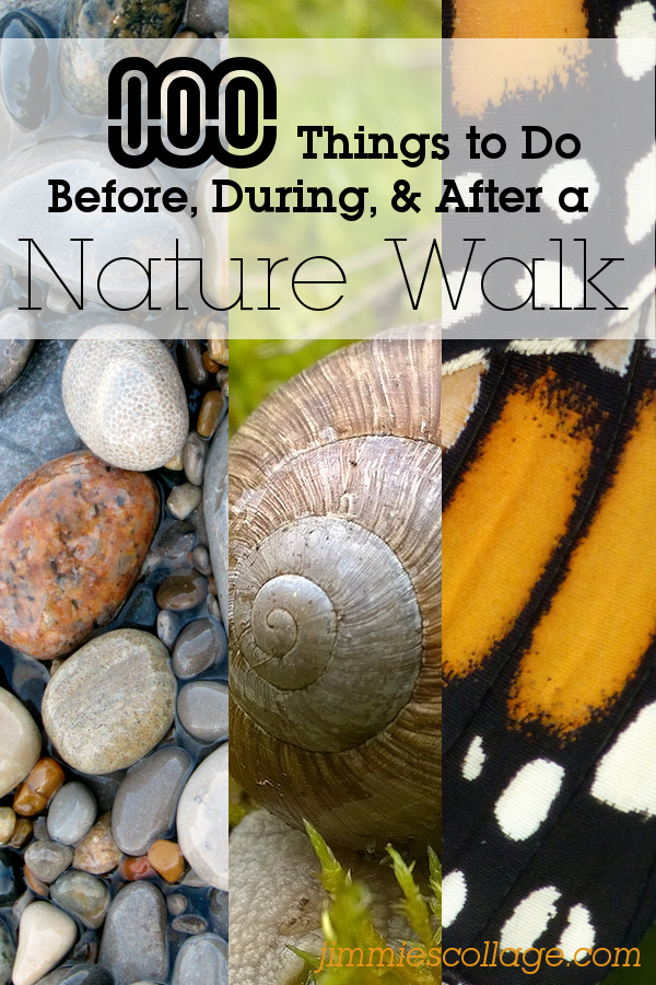 100 Things to Do Before, During, or After a Nature Walk