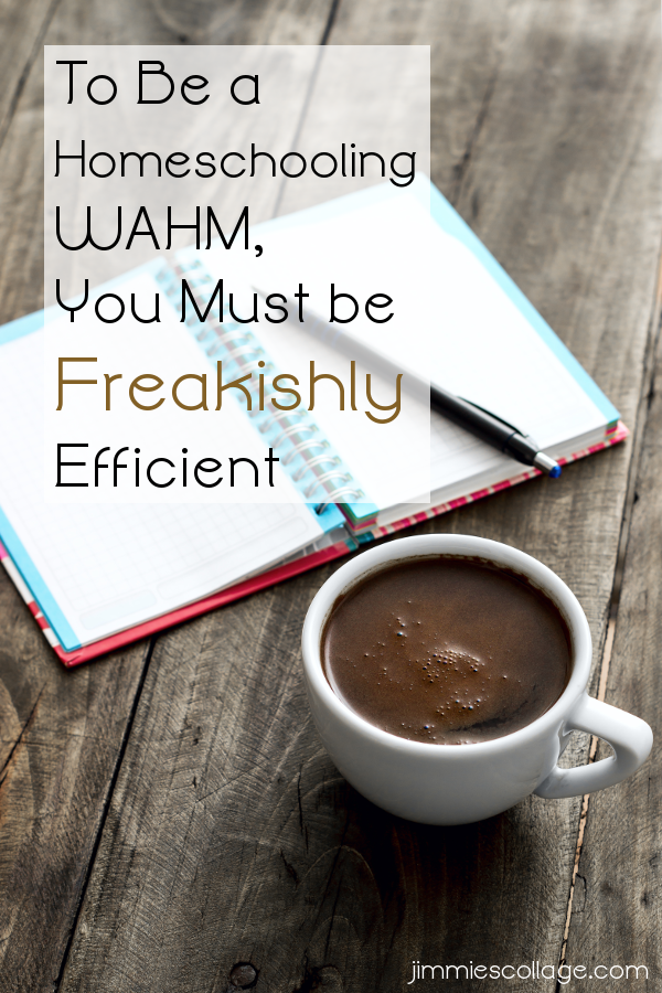 To Be a Homeschooling WAHM, You Must be Freakishly Efficient