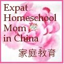 expat hs mom in china button