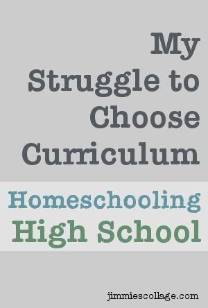 struggle to choose high school curriculum