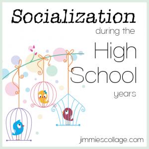 socialization-high-school
