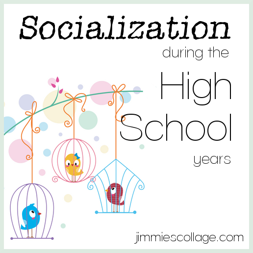 Socialization During the High School Years