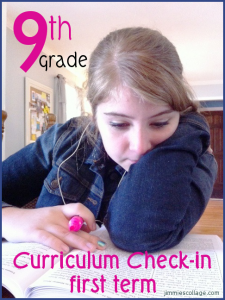 9th grade curriculum checkin for first term, jimmiescollage.com