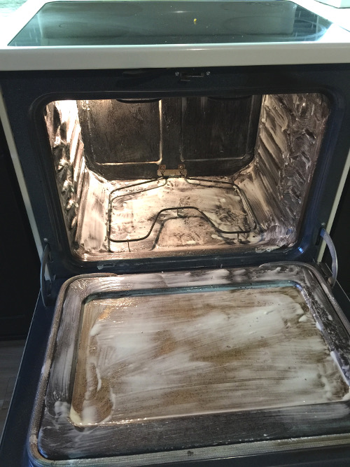 blog-oven-with-cleaning-paste