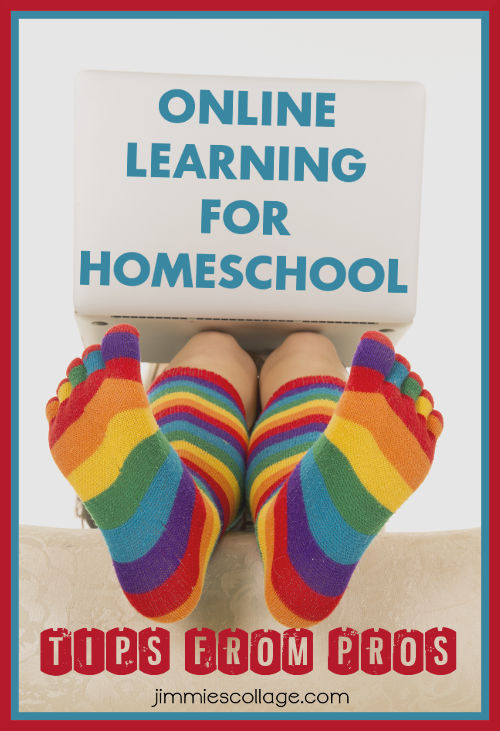 Online Learning for Homeschool: Tips from the Pros